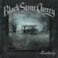 Black Stone Cherry : nuovo lyric video online