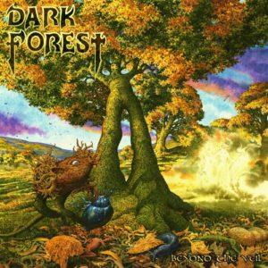 dark forest-500x500