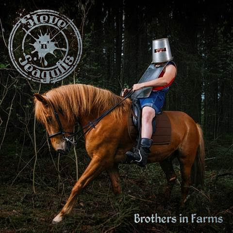 Steve 'N' Seagulls Brothers in farms