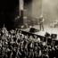Klogr : nuovo video online